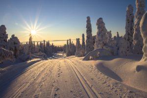 Wat te doen in Lapland