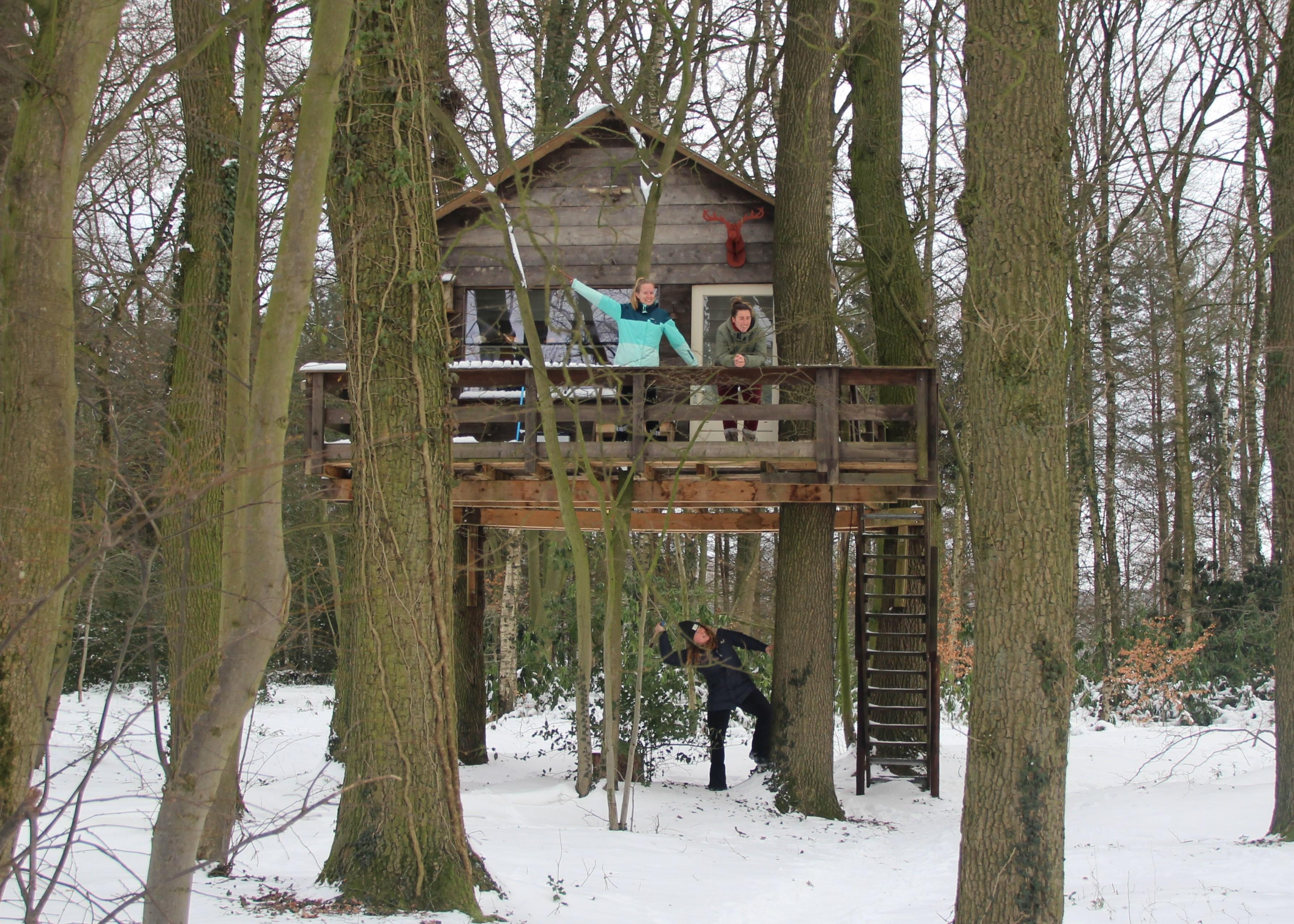 Overnachten in een boomhut in Twente